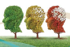 Dementias and environmental and occupational exposures